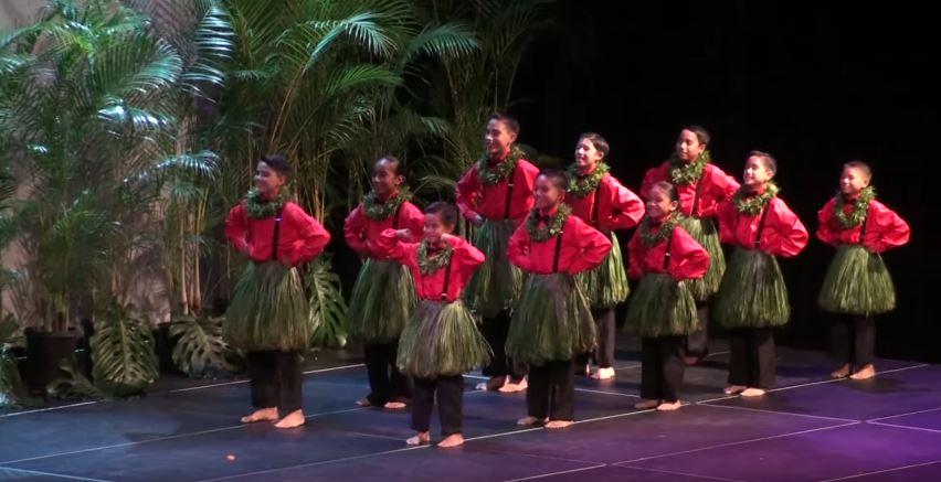 Traje hawaiano nino - Auana 2