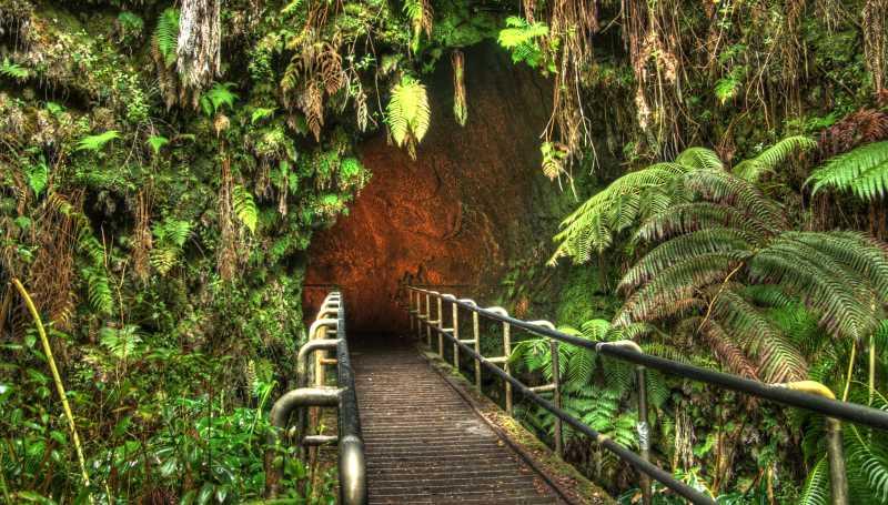 entrada turston lava tube en parque nacional de los volcanes